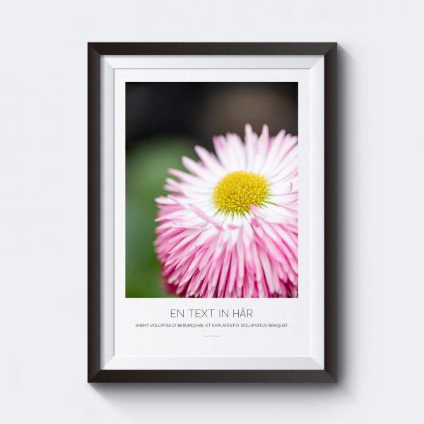 personlig-poster-rosa-blomma-egen-text